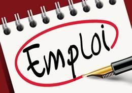 2017 les mesures en faveur de l'emploi