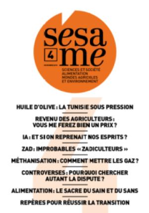 sesame04-210x300