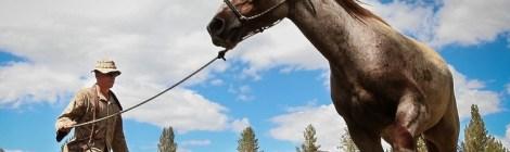 Des hommes de cheval
