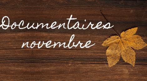 Les nouveautés de novembre
