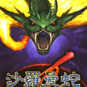 The cover art of the game Salamander Portable.