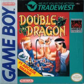 The cover art of the game Double Dragon .