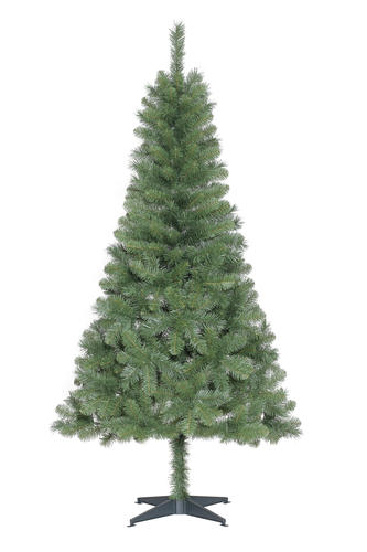 6 Pacific Pine Christmas Tree at Menards