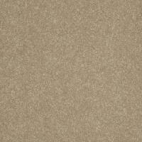 Shaw Delighted Plush Carpet 15 Ft Wide