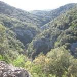 le vallon du Rieussec