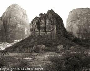 Zion National Park BW