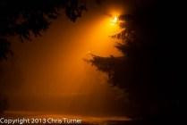 Fog and street light2