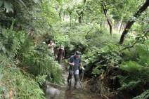 UrtiArda - Clube do Ambiente e Património do Arda e Urtigosa