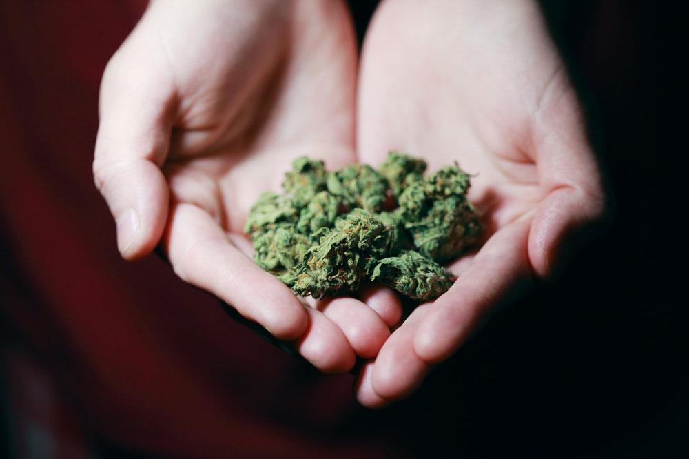 Fleurs CBD Cannabis