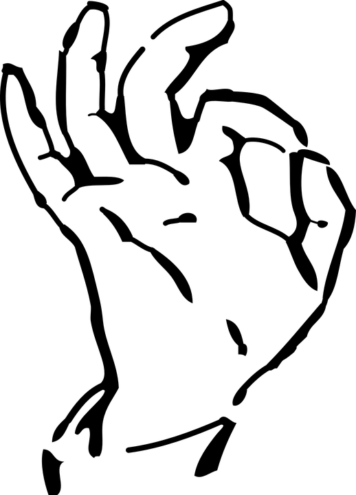 NEW! Beginning American Sign Language: Distance Education