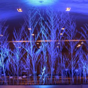 Arriendo de ramas de bambú