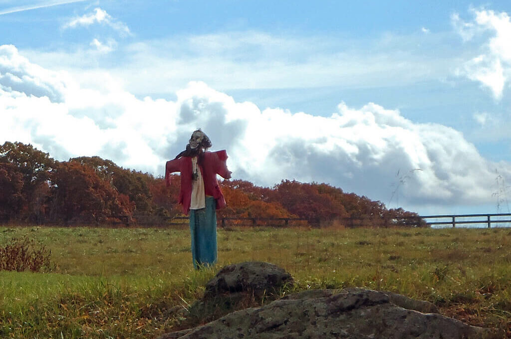 photo of scarecrow in a field