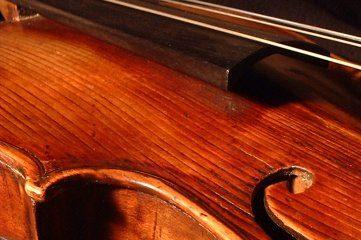 photo of violin
