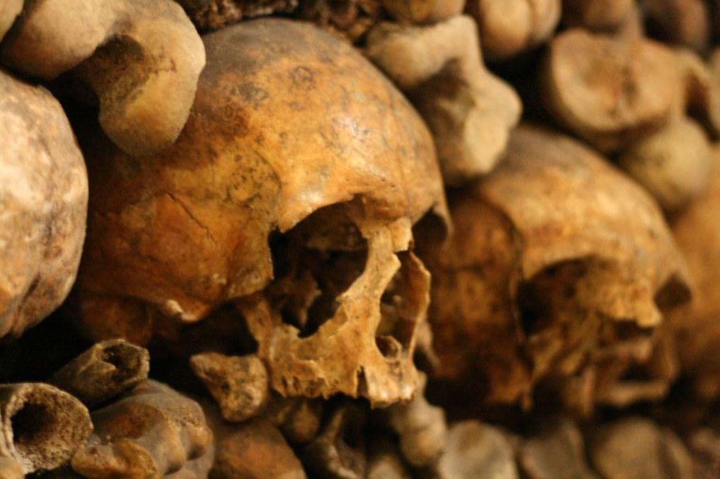 photo of skulls and bones in catacombs