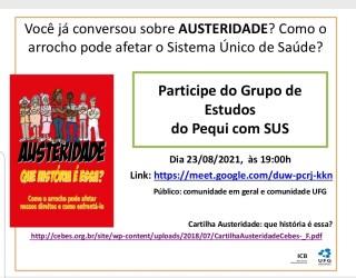 Núcleos Goiás e DF do Cebes promovem oficina de formação sobre Austeridade