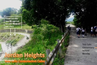 affordable lot for sale in cebu