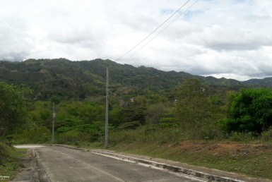 Lot for Sale in Pulangbato Cebu City