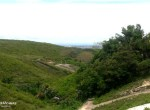 jordan-heights-the-greenery-view(1)