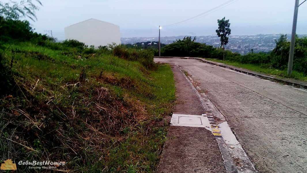 Lot for Sale in Talisay Cebu Cit