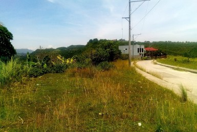 lot for sale in talisay cebu ci