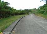Lot in Greenwoods pulangbato