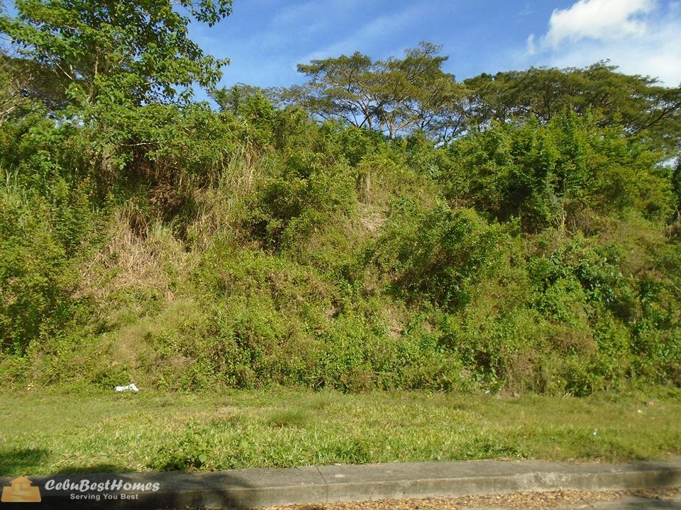 Cebu City Lot for Sale