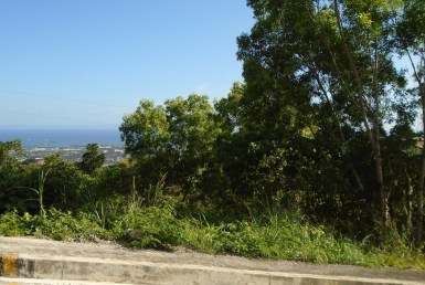 lot for sale vista grande cebu