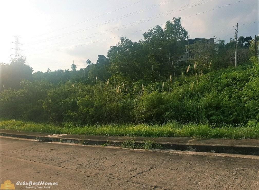lot for sale vista grande talisay cebu city
