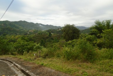 talamban lot for sale