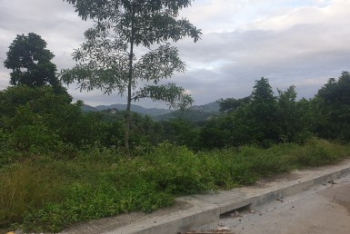 Subdivision Lot for Sale in Cebu Cit