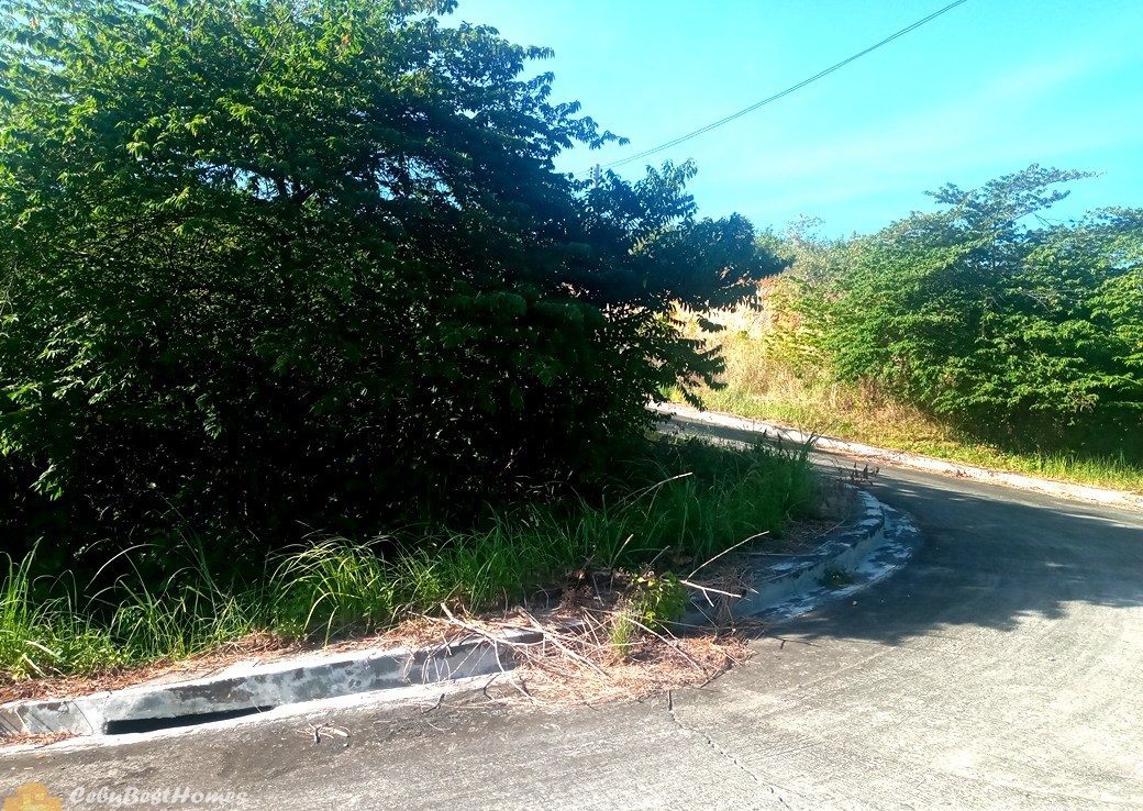Corner Lot for Sale in Consolacion Cebu