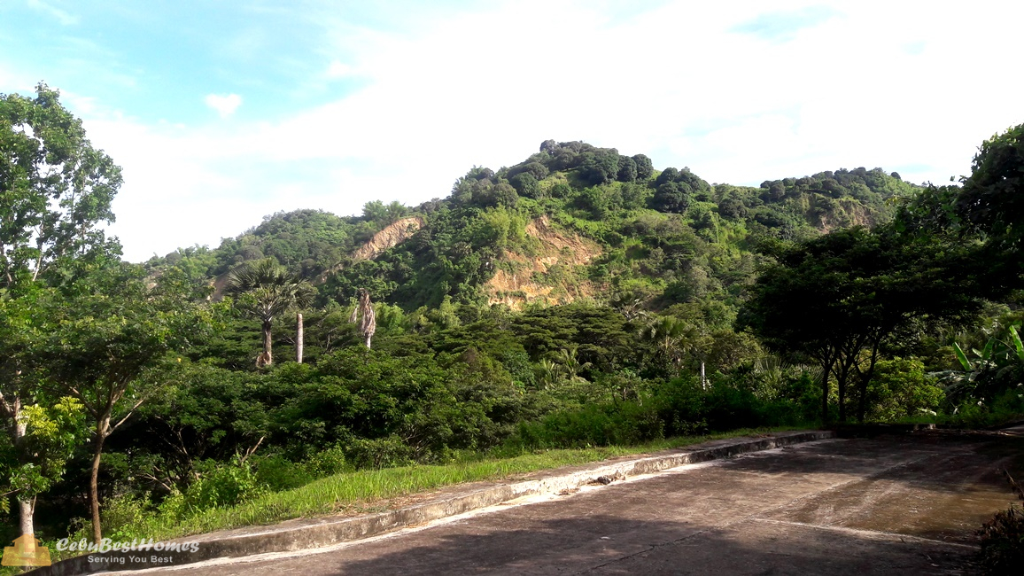 Overlooking Lot for Sale Cebu City