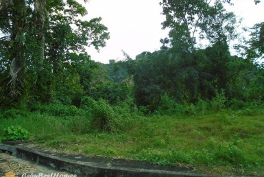 Lot for Sale in Cebu City Greenwoods