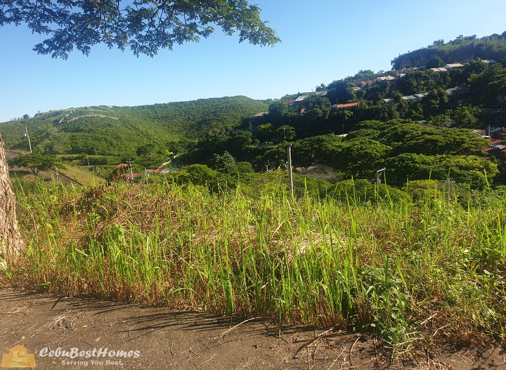 ASPEN HEIGHTS Lot for Sale in Consolacion Cebu