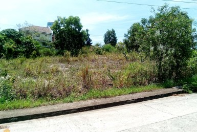 Lot for Sale in Vista Grande Talisay Cebu Cit