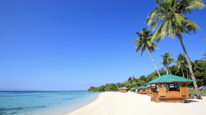 The best beaches you need to check out when you're in Cebu   Cebu Finest