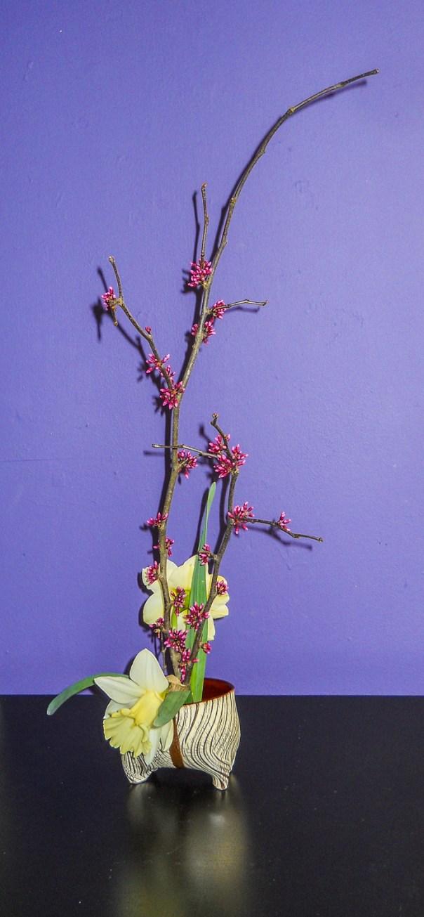Ikebana Arrangement 3-21-16 (3)