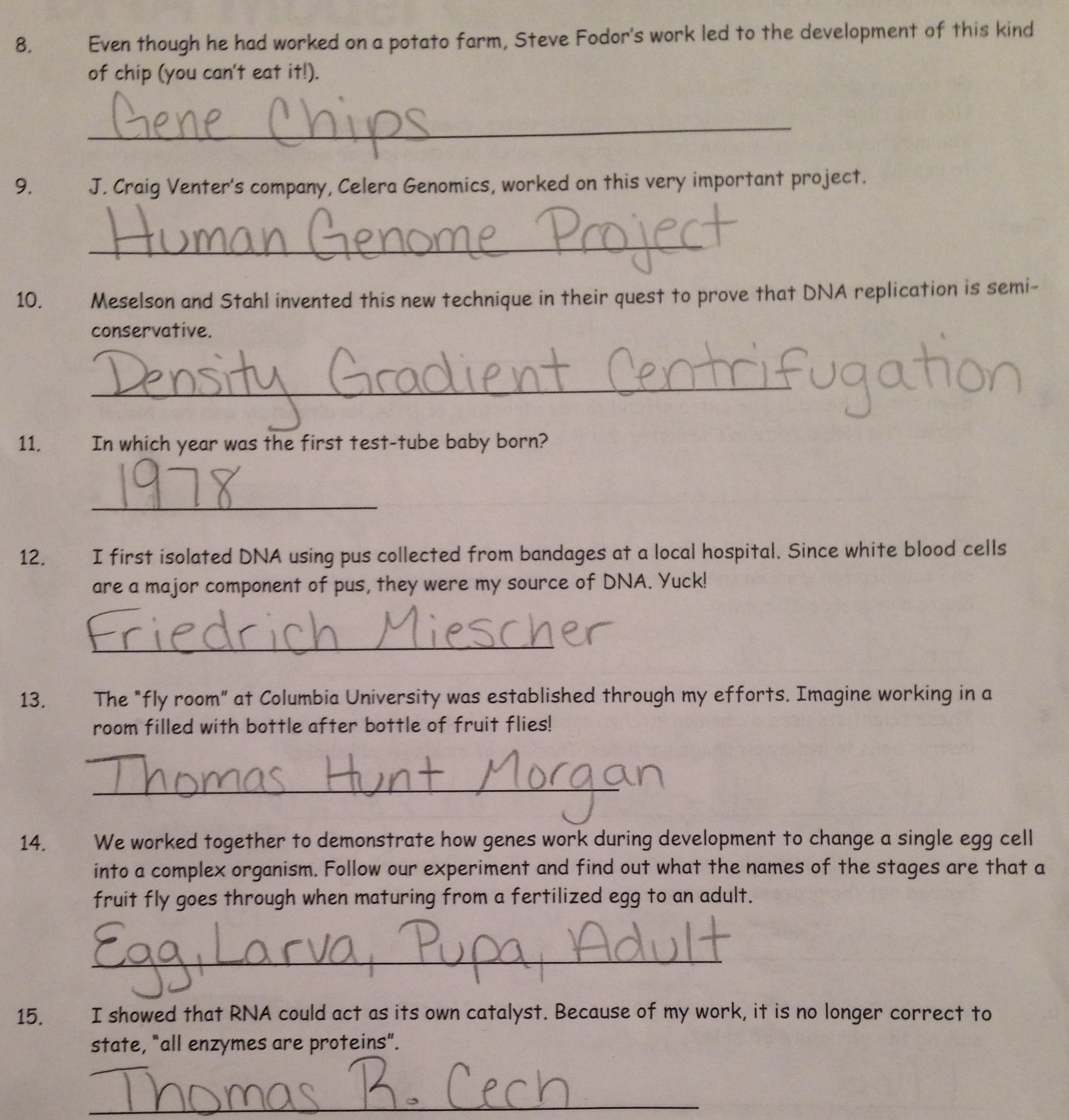 Dnai Scavenger Hunt Worksheet