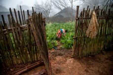 hmong_peolple_north_vietnam_photos_fotos_cecidef_2013_25