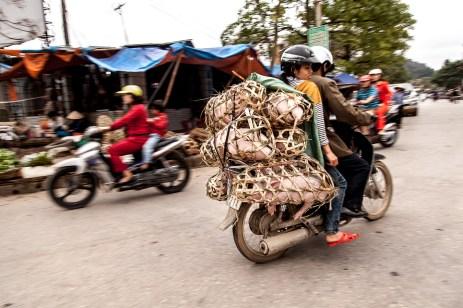 travel_photos_thailand_cambodia_vietnam_laos_2013_cecidef_03