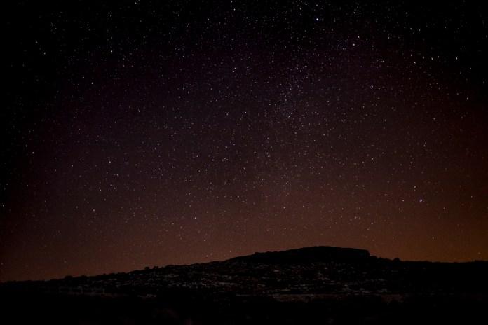 PORTUGAL_PASTOR_SHEPHERD_CECIDEF_2013_18