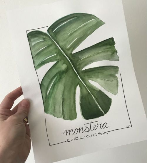 Jungle Drawing – review workshop
