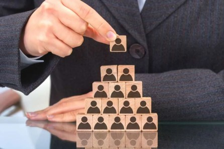 Hierarchy consultancy