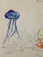 stained jellyfish