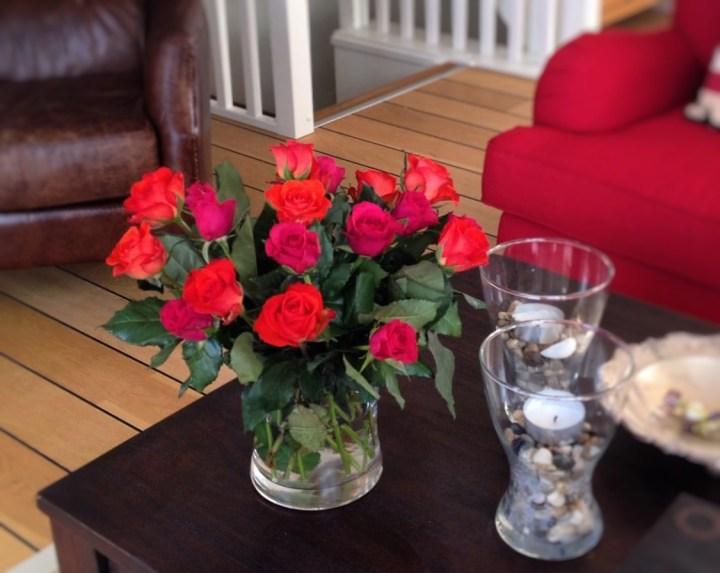 rödrosa rosor.jpg