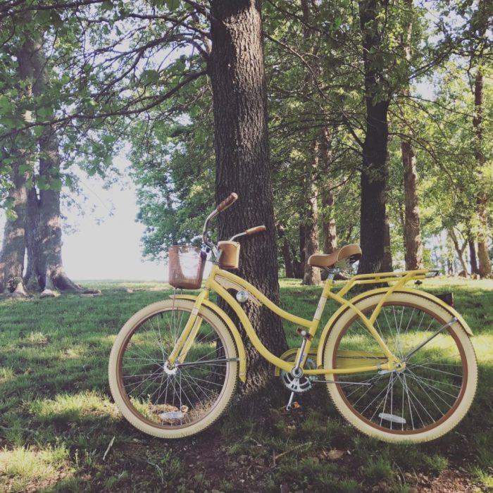 womens cruiser bike