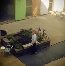 Greenhouse deli5