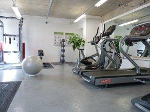 Greenhouse gym