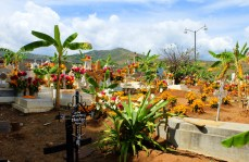 Cemetery view at San Pedro del Rincón with monuments covered in flowers.