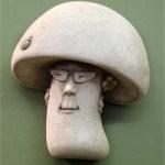 A Fungal